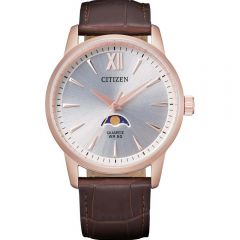 Citizen Quartz AK5003-05A Mens Watch