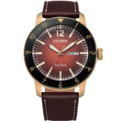 Citizen AW0079-13X Eco-Drive Mens Watch